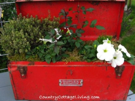Old-Red-Tool-Box-Planter-500x375